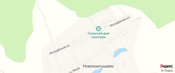 Молодежная улица на карте села Новокангышево с номерами домов