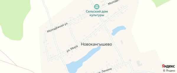 Улица Мира на карте села Новокангышево с номерами домов