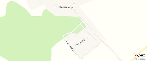 Полевая улица на карте села Новокангышево с номерами домов