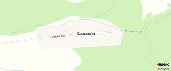 Лесная улица на карте деревни Камышлы с номерами домов