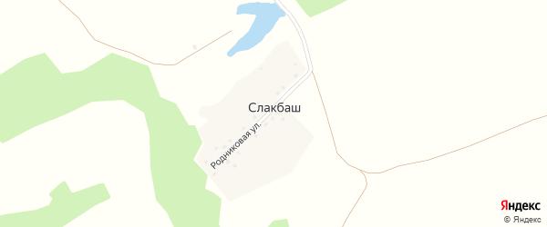 Родниковая улица на карте деревни Слакбаша с номерами домов