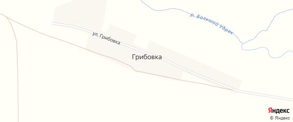 Улица Грибовка на карте деревни Грибовки с номерами домов