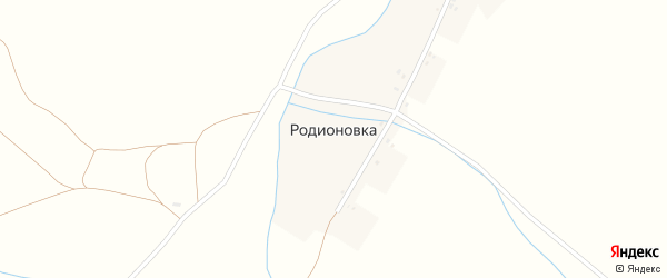 Центральная улица на карте деревни Родионовки с номерами домов