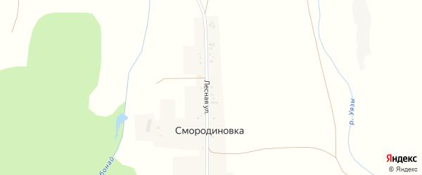 Лесная улица на карте деревни Смородиновки с номерами домов
