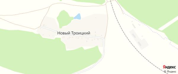 Железнодорожная улица на карте деревни Нового Троицкого с номерами домов