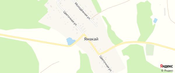 Цветочная улица на карте села Ямакая с номерами домов