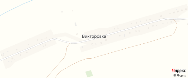 Социалистическая улица на карте деревни Викторовки с номерами домов
