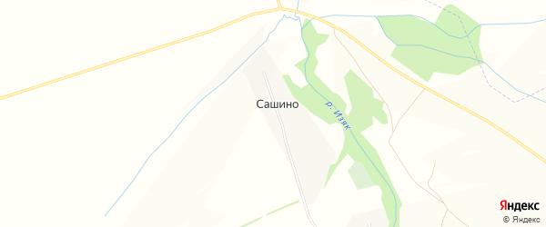 Карта деревни Сашино в Башкортостане с улицами и номерами домов