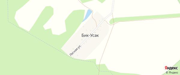 Лесная улица на карте деревни Бика-Усака с номерами домов