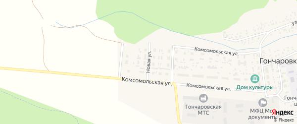 Новая улица на карте деревни Гончаровки с номерами домов
