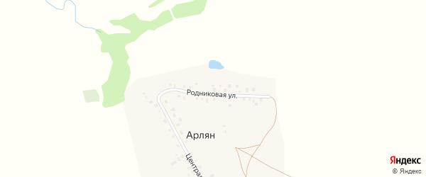 Родниковая улица на карте деревни Арляна с номерами домов