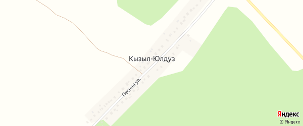 Лесная улица на карте деревни Кызыла-Юлдуза с номерами домов
