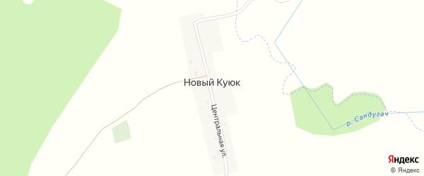 Центральная улица на карте деревни Нового Куюка с номерами домов