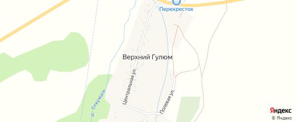 Полевая улица на карте деревни Верхнего Гулюма с номерами домов