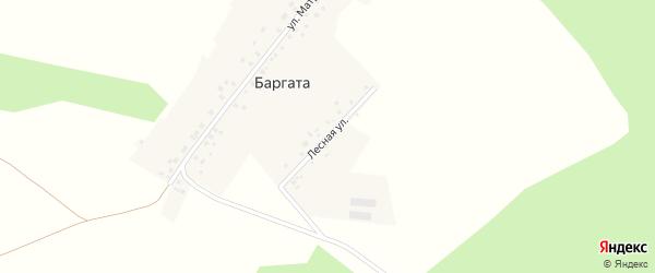 Лесная улица на карте деревни Баргаты с номерами домов