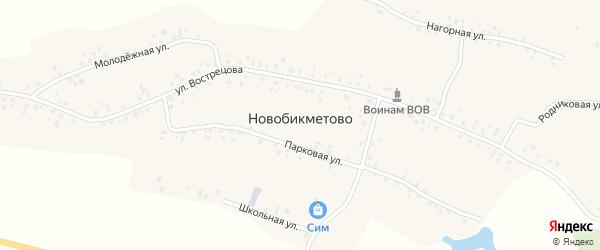 Родниковая улица на карте деревни Новобикметово с номерами домов