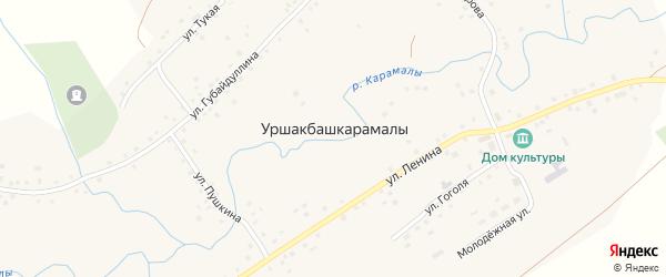Улица Пушкина на карте села Уршакбашкарамалы с номерами домов