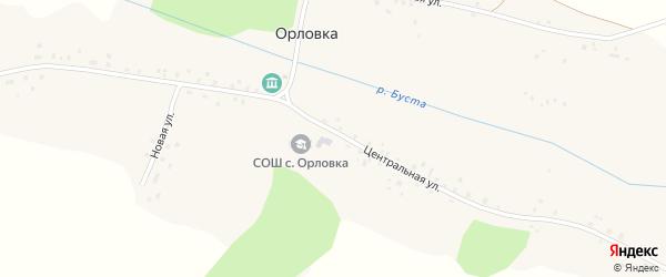Центральная улица на карте села Орловки с номерами домов
