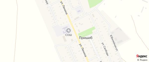 Улица Ленина на карте села Пришиба с номерами домов