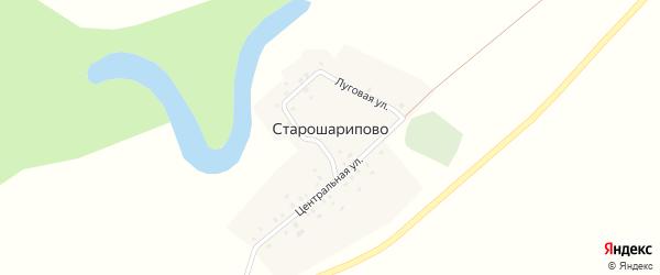 Луговая улица на карте деревни Старошарипово с номерами домов