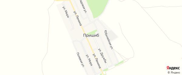 Карта села Пришиба в Башкортостане с улицами и номерами домов