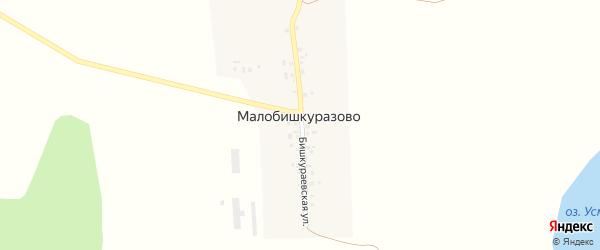 Бишкураевская улица на карте деревни Малобишкуразово с номерами домов