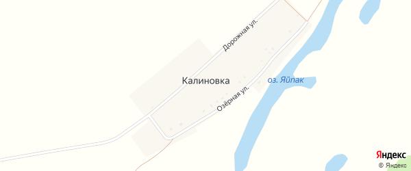 Озерная улица на карте деревни Калиновки с номерами домов