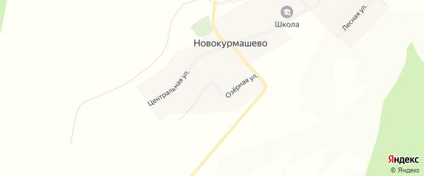 Карта села Новокурмашево в Башкортостане с улицами и номерами домов