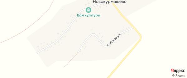 Центральная улица на карте села Новокурмашево с номерами домов