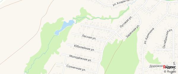 Лесная улица на карте села Федоровки с номерами домов