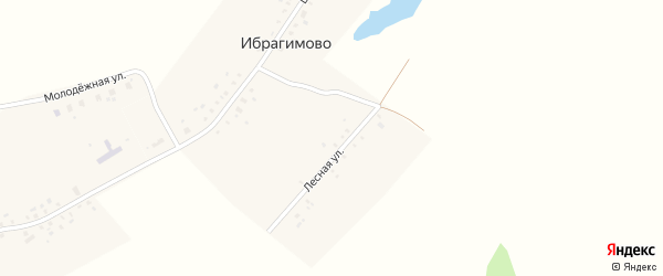 Лесная улица на карте деревни Ибрагимово с номерами домов
