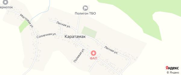 Лесная улица на карте деревни Каратамака с номерами домов