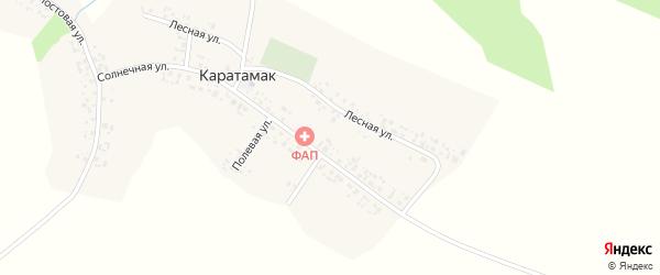 Речная улица на карте деревни Каратамака с номерами домов