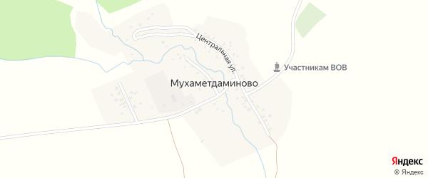 Центральная улица на карте деревни Мухаметдаминово с номерами домов