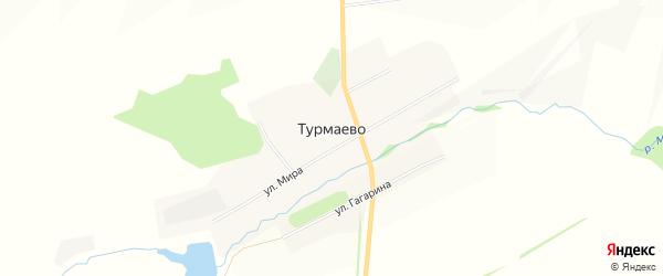 Карта села Турмаево в Башкортостане с улицами и номерами домов