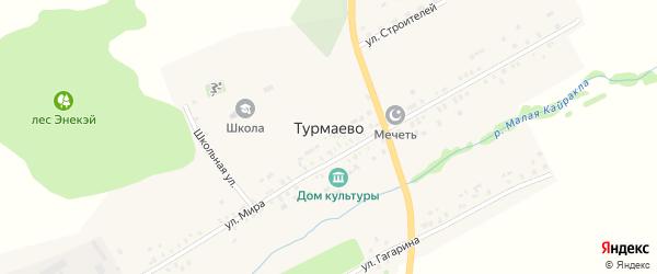 Школьная улица на карте села Турмаево с номерами домов