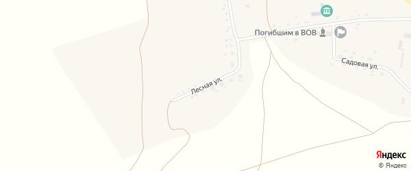 Лесная улица на карте села Маядыково с номерами домов
