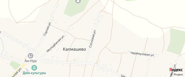 Сосновая улица на карте села Калмашево с номерами домов