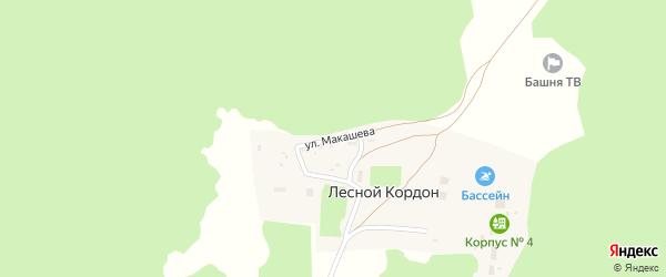 Улица Макашева на карте деревни Лесного кордона с номерами домов