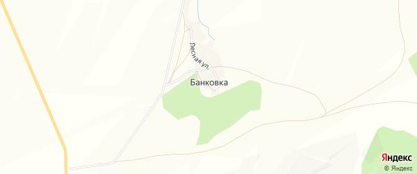 Карта деревни Банковки в Башкортостане с улицами и номерами домов