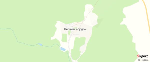 Карта деревни Лесного кордона в Башкортостане с улицами и номерами домов