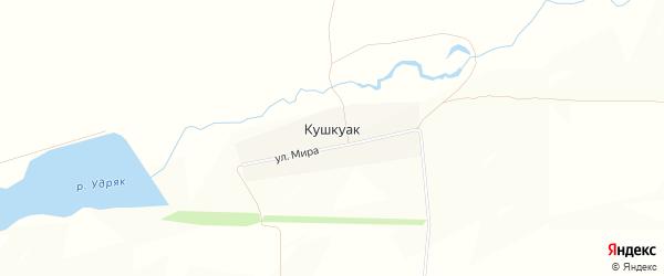 Карта деревни Кушкуака в Башкортостане с улицами и номерами домов