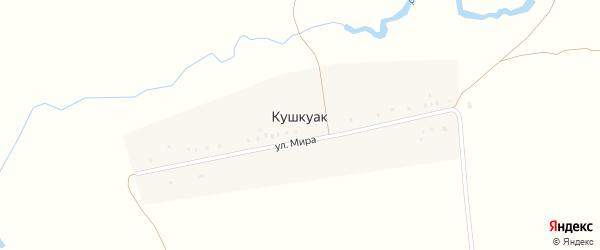 Улица Мира на карте деревни Кушкуака с номерами домов