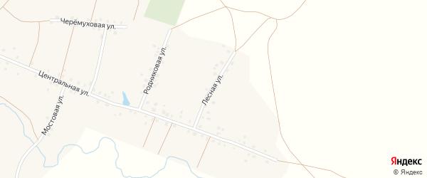 Лесная улица на карте села Калмашево с номерами домов