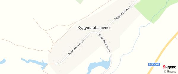 Родниковая улица на карте деревни Кудушлибашево с номерами домов