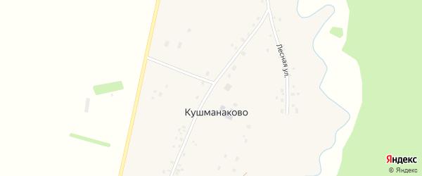 Улица Роберта Ахметгалиева на карте деревни Кушманаково с номерами домов