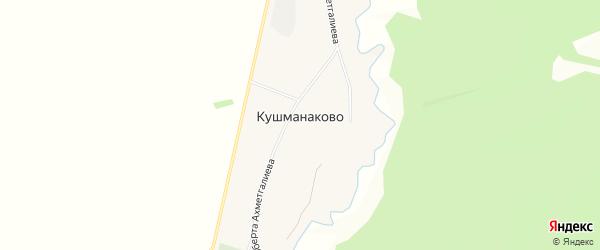 Карта деревни Кушманаково в Башкортостане с улицами и номерами домов