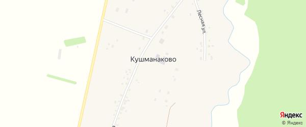 Дорожная улица на карте деревни Кушманаково с номерами домов