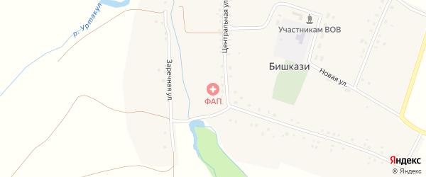 Лесной переулок на карте села Бишкази с номерами домов