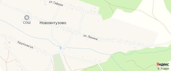 Улица Ленина на карте села Новоянтузово с номерами домов